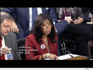 Lucia Mcbath testifies at US Senate hearing on stand your ground