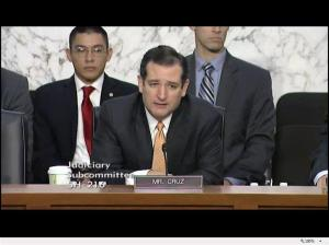 Senator Ted Cruz at stand your ground hearing October 29, 2013